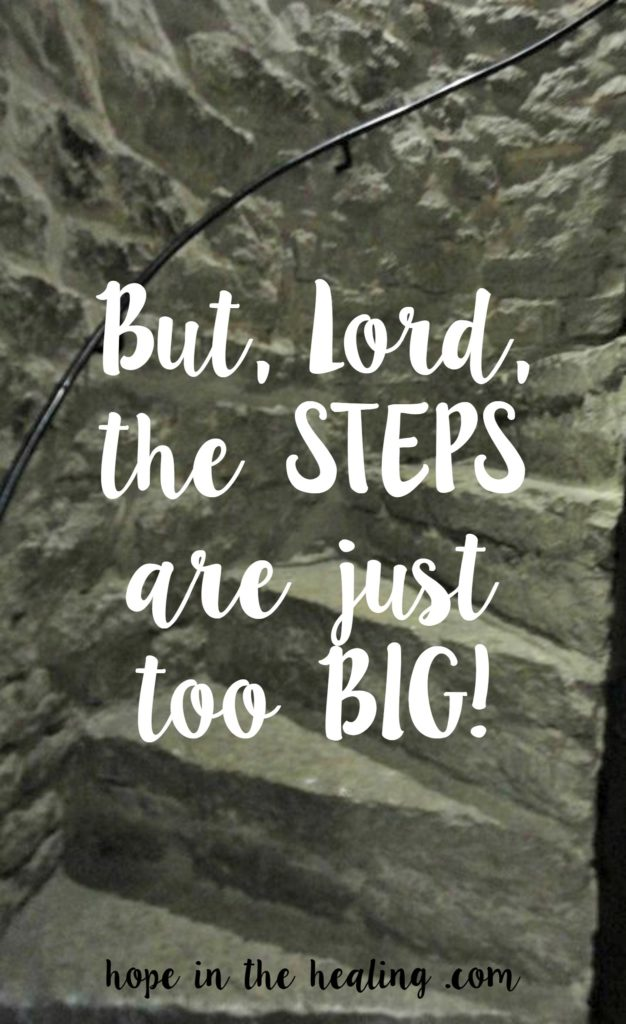But Lord, the steps are just too big!